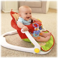 Fisher Price Deluxe Sit-Me-Up Floor Seat - Monkey