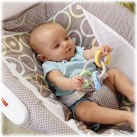 Fisher Price Newborn Rock 'n Play™ Sleeper - Luminosity