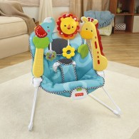 Fisher Price 2-in-1 Sensory Stages Bouncer