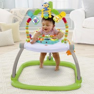 Fisher Price Rainforest Friends SpaceSaver Jumperoo®