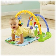 Fisher Price Link 'n Play Musical Gym