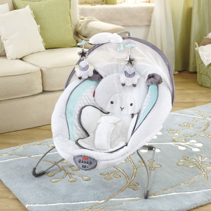 Fisher Price My Little Lamb™ Platinum II Deluxe Bouncer