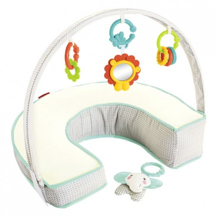 Fisher Price Perfect Position 4-in-1 Nursing Pillow Cover - Elephant Luxe