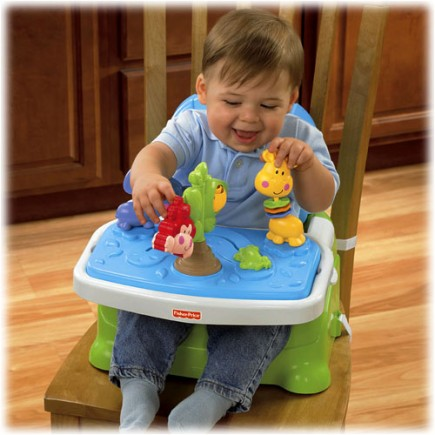 Fisher Price Discover 'n Grow™ Busy Baby Booster