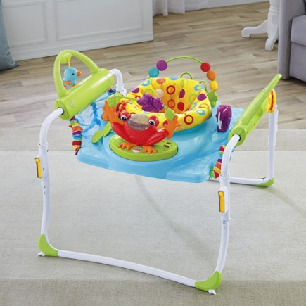 Fisher Price First Steps Jumperoo™