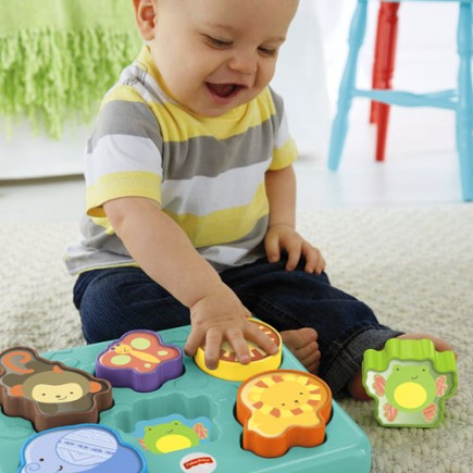 Fisher Price Monkey & Pals Puzzle